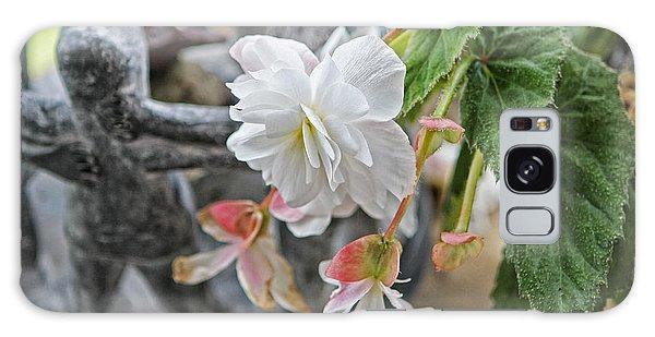 Begonia Galaxy Case by Denise Romano