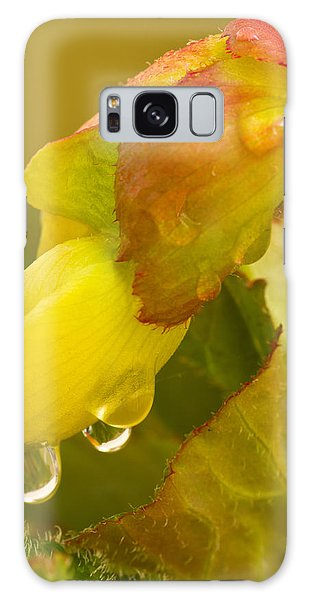 Begonia Raindrops  Galaxy Case