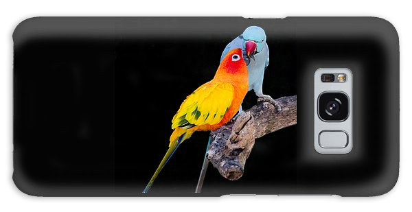 Sun Conure And Ring Neck Parakeet 2 Galaxy Case