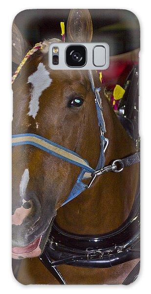 Belgian Draft Horse Galaxy Case