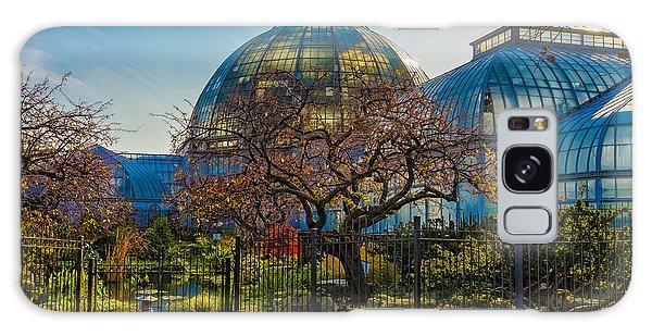 Belle Isle Arboretum Galaxy Case