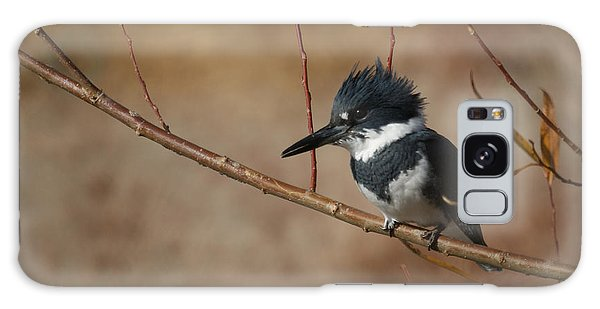 Belted Kingfisher Galaxy Case