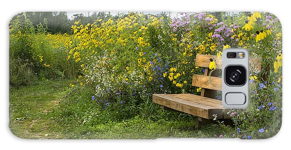 Bench And Meadow Galaxy Case