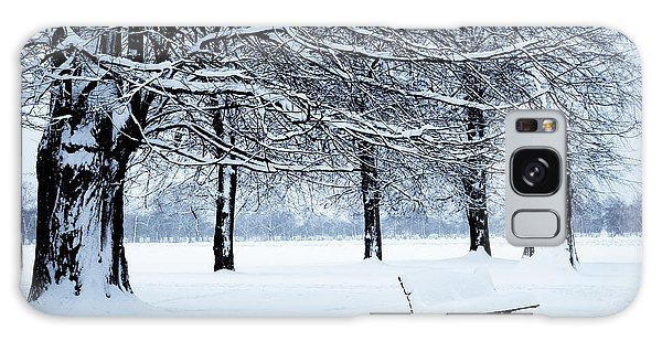 Bench In Snow Galaxy Case by Lana Enderle