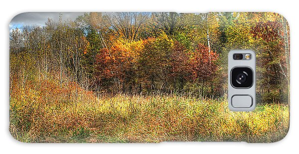 Benched In Autumn Galaxy Case by Jimmy Ostgard