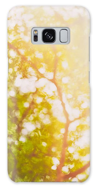 Beneath A Tree  14 5199   Diptych  Set 1 Of 2 Galaxy Case
