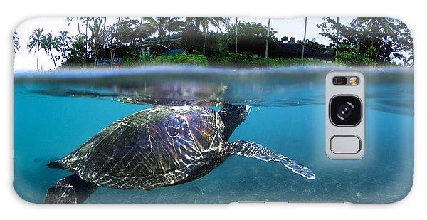 Turtle Galaxy Case - Beneath The Palms by Sean Davey