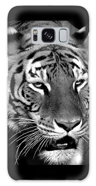 Bengal Tiger In Black And White Galaxy Case by Venetia Featherstone-Witty