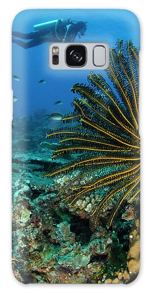 Feather Stars Galaxy Case - Bennett's Feather Star (oxycomanthus by Pete Oxford