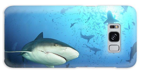 Hammerhead Shark Galaxy Case - Beqa Shark Labs by Alexander Safonov