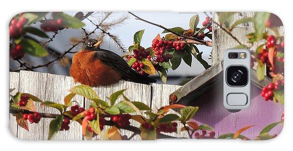 Berry Stuffed Robin Galaxy Case by Karen Horn