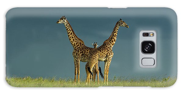 Giraffe Galaxy Case - Between The Two by Massimo Mei