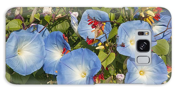 Bhubing Palace Gardens Morning Glory Dthcm0433 Galaxy Case by Gerry Gantt