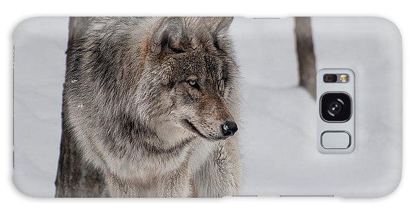 Big Bad Wolf Galaxy Case by Bianca Nadeau