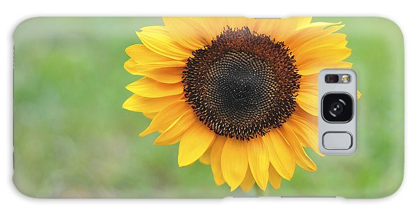 Big Bright Yellow Colorful Sunflower Art Print Galaxy Case