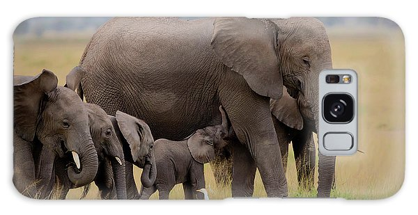 Africa Galaxy Case - Big Family by Young Feng