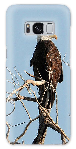 Big Horn Bald Eagle Galaxy Case