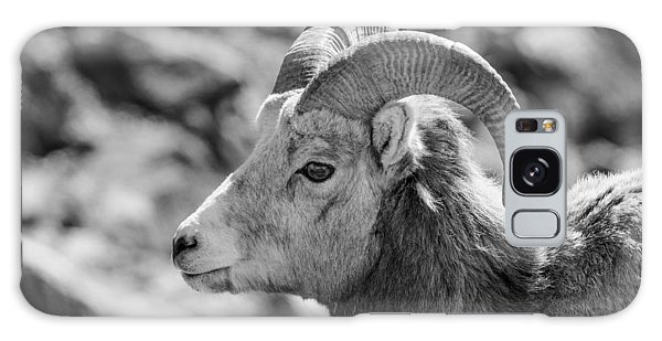Big Horn Sheep Profile Galaxy Case