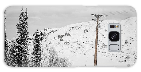 Big Horn Sheep Hinton Hillside Galaxy Case