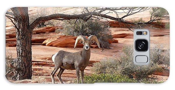 Big Horn Zion National Park Ut Galaxy Case