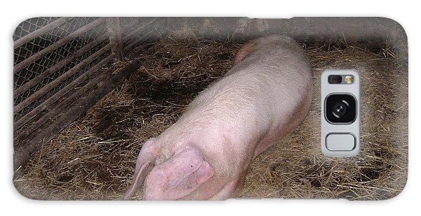 Big Pig Galaxy Case