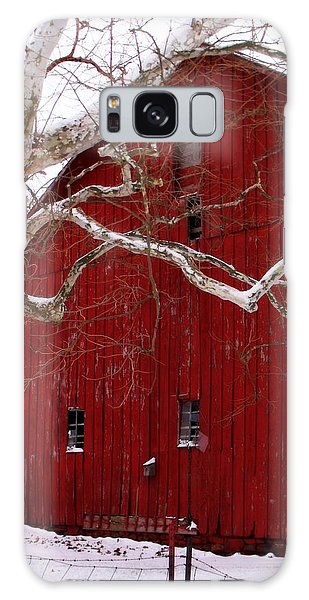 Big Red Bird House Galaxy Case