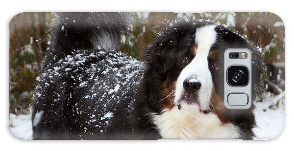 Snow Happy Galaxy Case by Patti Whitten