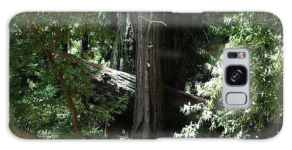 Big Sur Big Trees Galaxy Case
