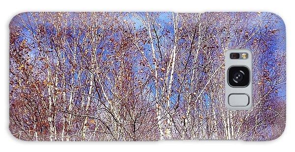 Orange Galaxy Case - Birch Trees And Blue Sky In Autumn by Matthias Hauser