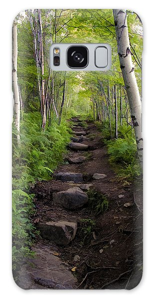 Birch Woods Hike Galaxy Case