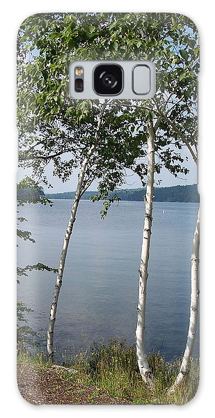 Birches On Sunapee Galaxy Case