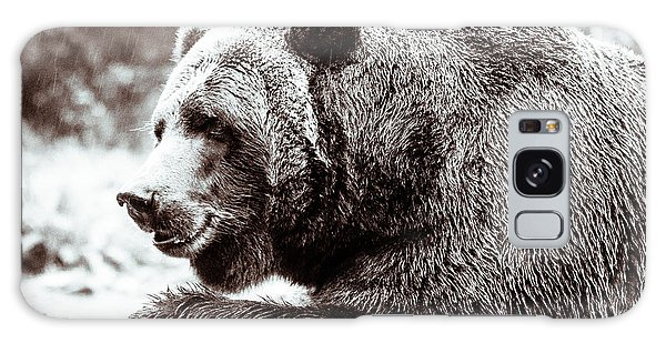 Bird And A Bear In Black And White Galaxy Case by Wade Brooks