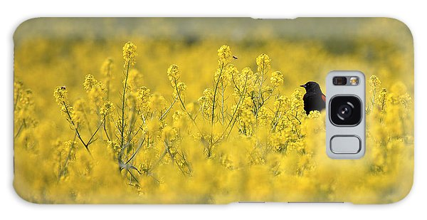 Bird And The Bees Mg_9150 Galaxy Case by David Orias