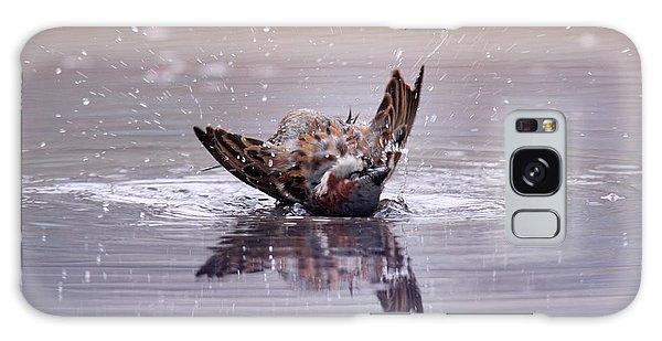Bird Bath Galaxy Case