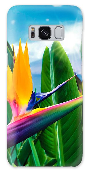 Bird Of Paradise 5 Galaxy Case by Dawn Eshelman