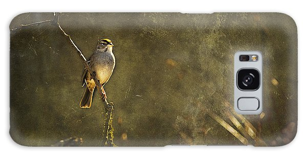 Galaxy Case featuring the photograph Bird On A Branch by Belinda Greb