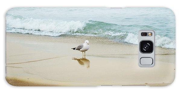 Bird On The Beach Galaxy Case by Milena Ilieva