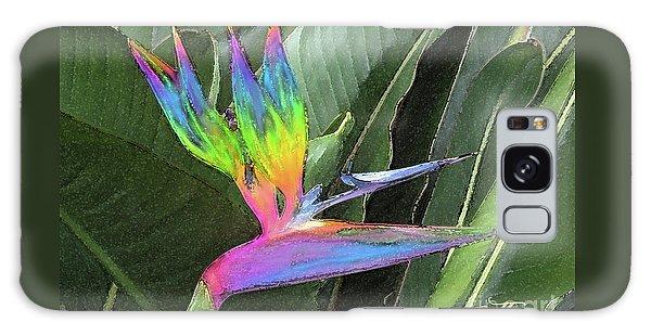 Bird Ow  Paradise Galaxy Case