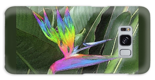 Bird Ow  Paradise Galaxy Case by Suzette Kallen
