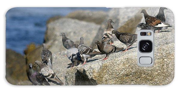 Bird Rock Beach Galaxy Case