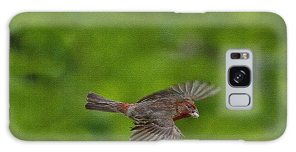 Galaxy Case featuring the photograph Bird Soaring With Food In Beak by Dan Friend