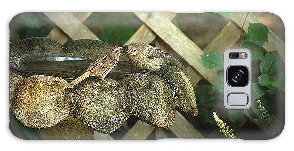 Birdbath Rendezvous Galaxy Case by Margie Avellino