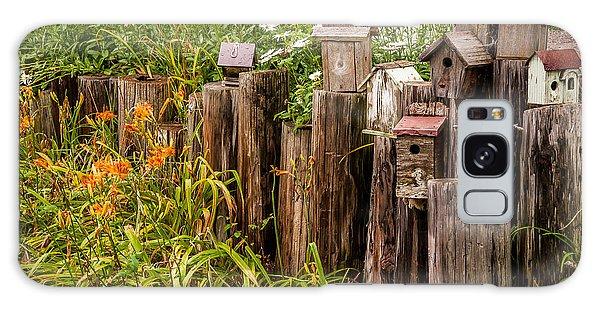 Birdhouses Beside A Country Road Galaxy Case