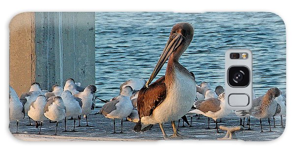 Birds - Among Friends Galaxy Case by HH Photography of Florida