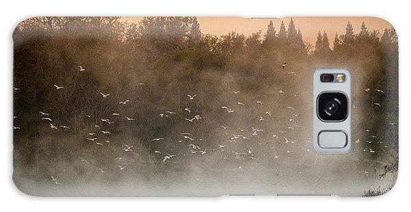 Birds And The Fog  Galaxy Case