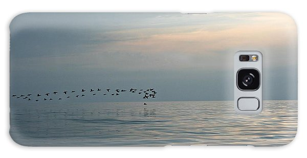 Birds At Sunset In Sister Bay Galaxy Case