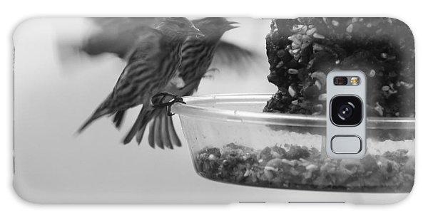 Birds Feeding Galaxy Case