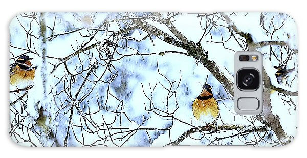 Birds In Winter Galaxy Case