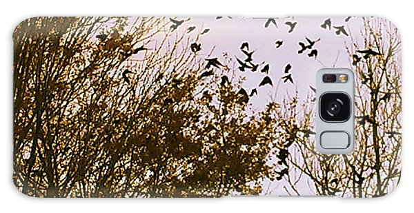 Birds Of A Feather Flock Together Galaxy Case