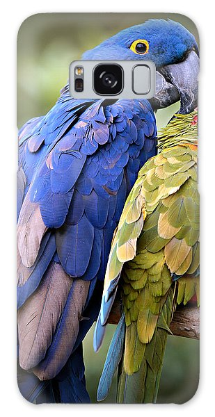 Macaw Galaxy Case - Birds Of A Feather by Stephen Stookey